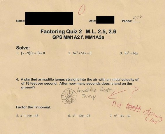 armadillos test question funny Top 10 Most Funny Exam Answers