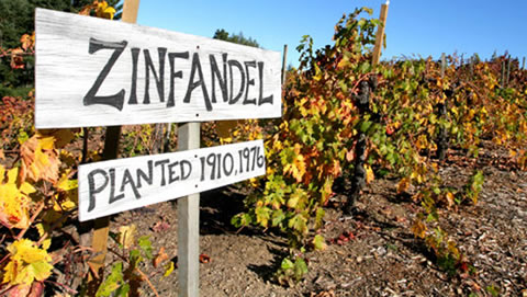Californian Zinfandel Wine 10 Best Red Wine Brands