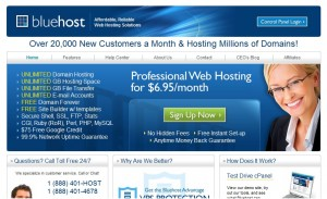 blueshot 300x183 Top 10 Best Web Hosting Companies in 2011