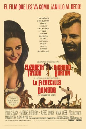 The Taming of the Shrew 10 Best Elizabeth Taylor Movies Ever