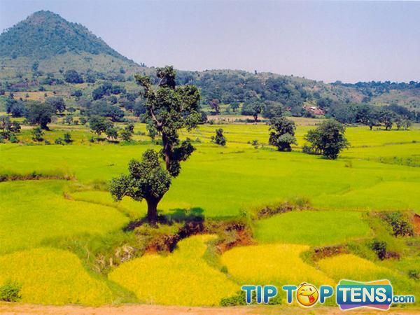 araku valley Top 10 Places To Visit in INDIA