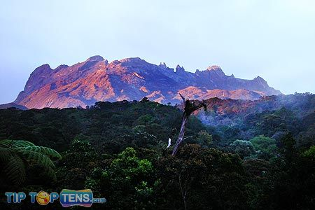 mount kinabalu Top 10 Biggest and Popular Rainforests in The World