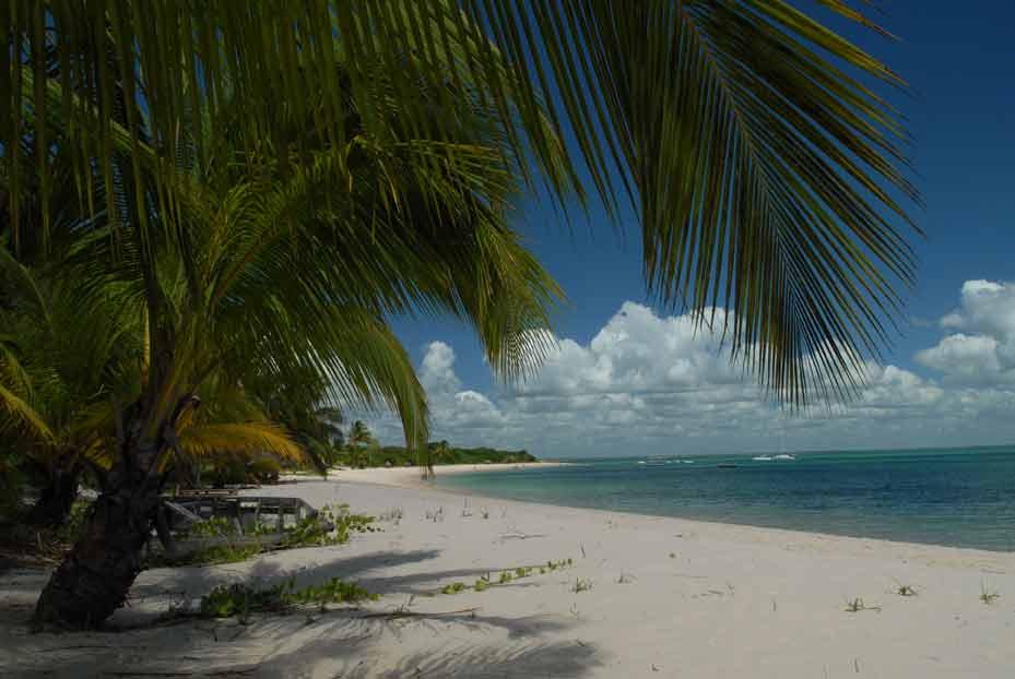 Madagascar Island 10 Largest Islands In The World