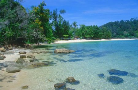 borneo island 10 Largest Islands In The World