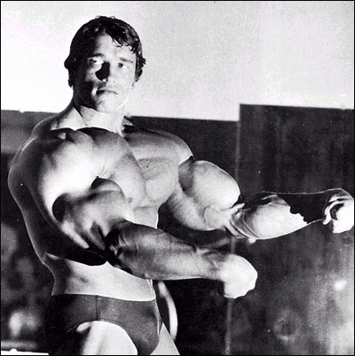 Arnold Schwarzenegger 10 Best Bodybuilders In The World
