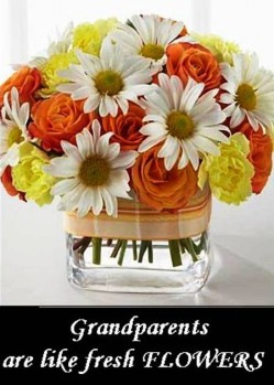 6. Flowers e1314704385656 10 Best Grandparents Day Gifts in 2011