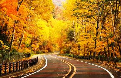 1. Go to National Parks and take a walk or a hike Top 10 Things to Do During the Fall Season