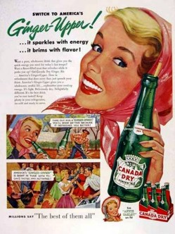 3. Canada Dry Ginger Ale e1315566727555 Top 10 Most Popular Soft Drinks