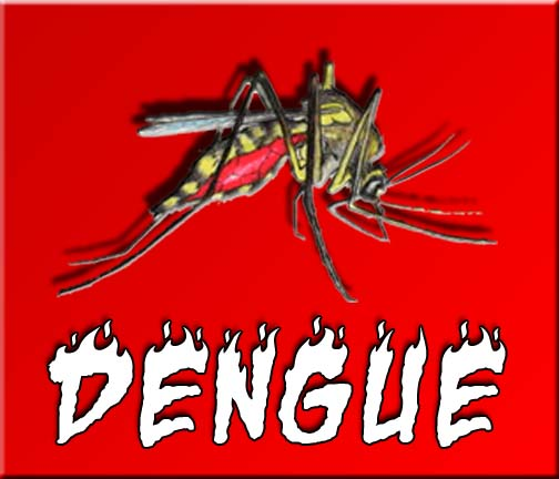 dengue fever  10 Tips on How to Prevent Getting Dengue Fever