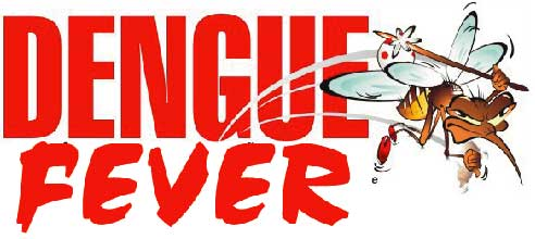 dengue fever 10 Dengue Fever Symptoms