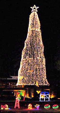 3. Coeur d'Alene Idaho Top 10 Largest Christmas Trees in the US