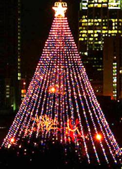 4. Austin Texas Top 10 Largest Christmas Trees in the US