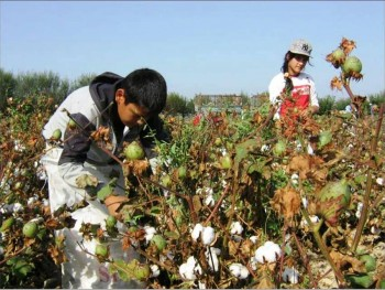 6. Uzbekistan e1322040580823 Top 10 Cotton Producing Countries