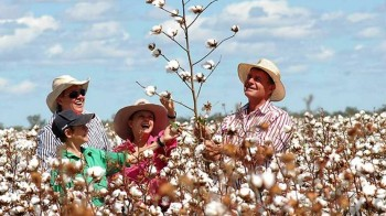 7. Australia e1322040491822 Top 10 Cotton Producing Countries
