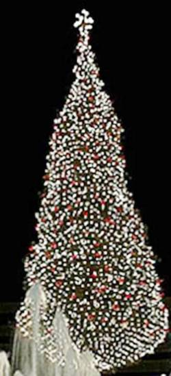 8. Kansas City Missouri Top 10 Largest Christmas Trees in the US