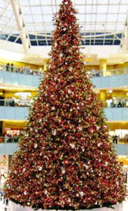 9. Dallas Texas Top 10 Largest Christmas Trees in the US