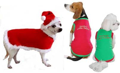 10. Clothes 10 Unique and Best Gift Ideas for Dogs