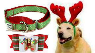 9. Accessories 10 Unique and Best Gift Ideas for Dogs