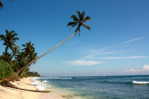 Sri Lanka beaches  Top 10 Best Honeymoon Destinations For 2012