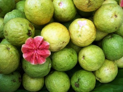 10. Guava e1334851498514 10 Lesser Known Fruits and Vegetables
