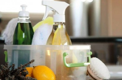 10. Use Non Toxic Cleaning Products e1334755689301 Top 10 Actions to Help the Environment