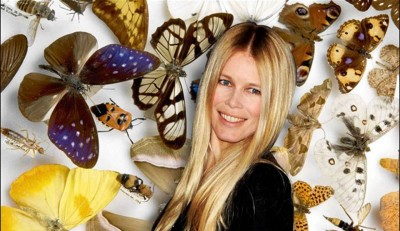 6. The Crawling Insects for Claudia Schiffer e13335460827861 10 Weird Hobbies of the Rich and Famous