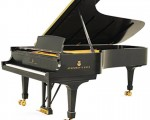 1. Steinway and Sons