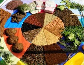 10. It Preserves Diversity e1348815662779 Top 10 Benefits of Organic Food