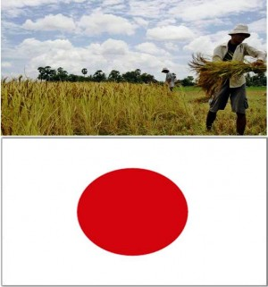 10. Japan  e1348142140607 Top 10 Rice Producing Countries in the World
