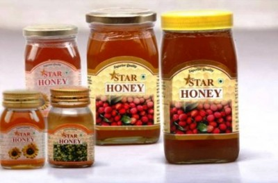 8. India e1348027507339 Top 10 Honey Producing Countries in the World