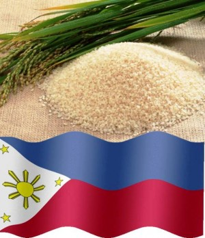 8. Philippines e1348141448143 Top 10 Rice Producing Countries in the World
