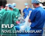 7. Ex Vivo Lung Perfusion