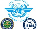 5. Organizations that Work With ICAO