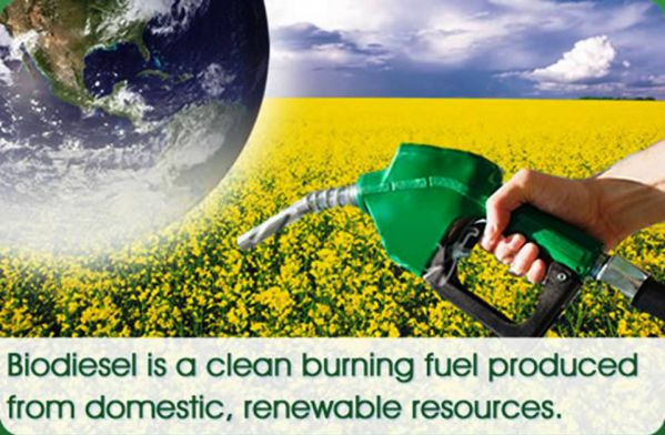 Top 10 Biodiesel Producing Countries in the World