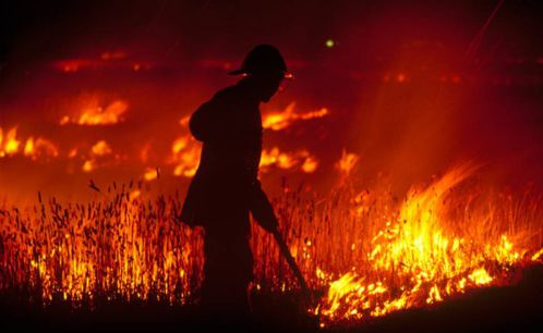 Top 10 Worst Wildfires in the World