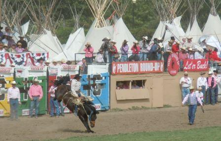 Top Ten Fun Things To Do During The 2014 Pendleton Roundup Week