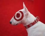 target dog 2