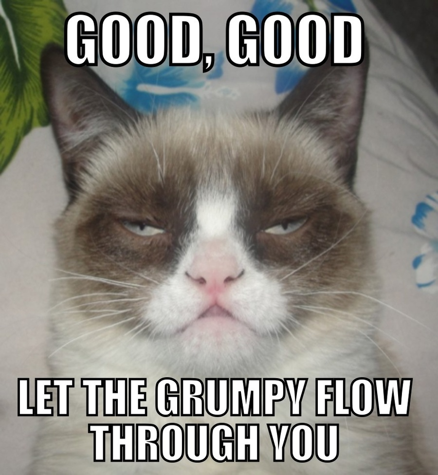 when someone pronounces it valentines day meme as me memes - 10 Funny Grumpy Cat Memes