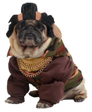 cute-dog-costumes-pity-the-fool-pet-dog-costume-21236