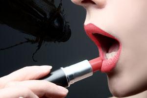 beetle-lipstick