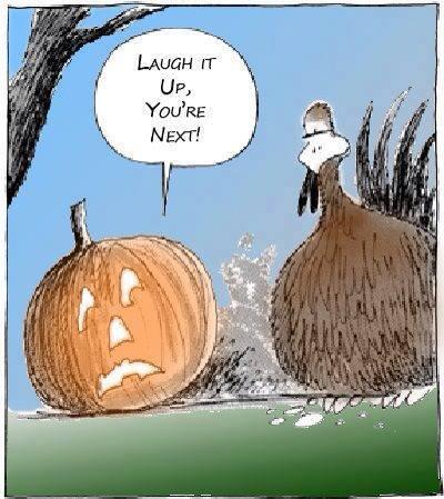 funny-thanksgiving-memes