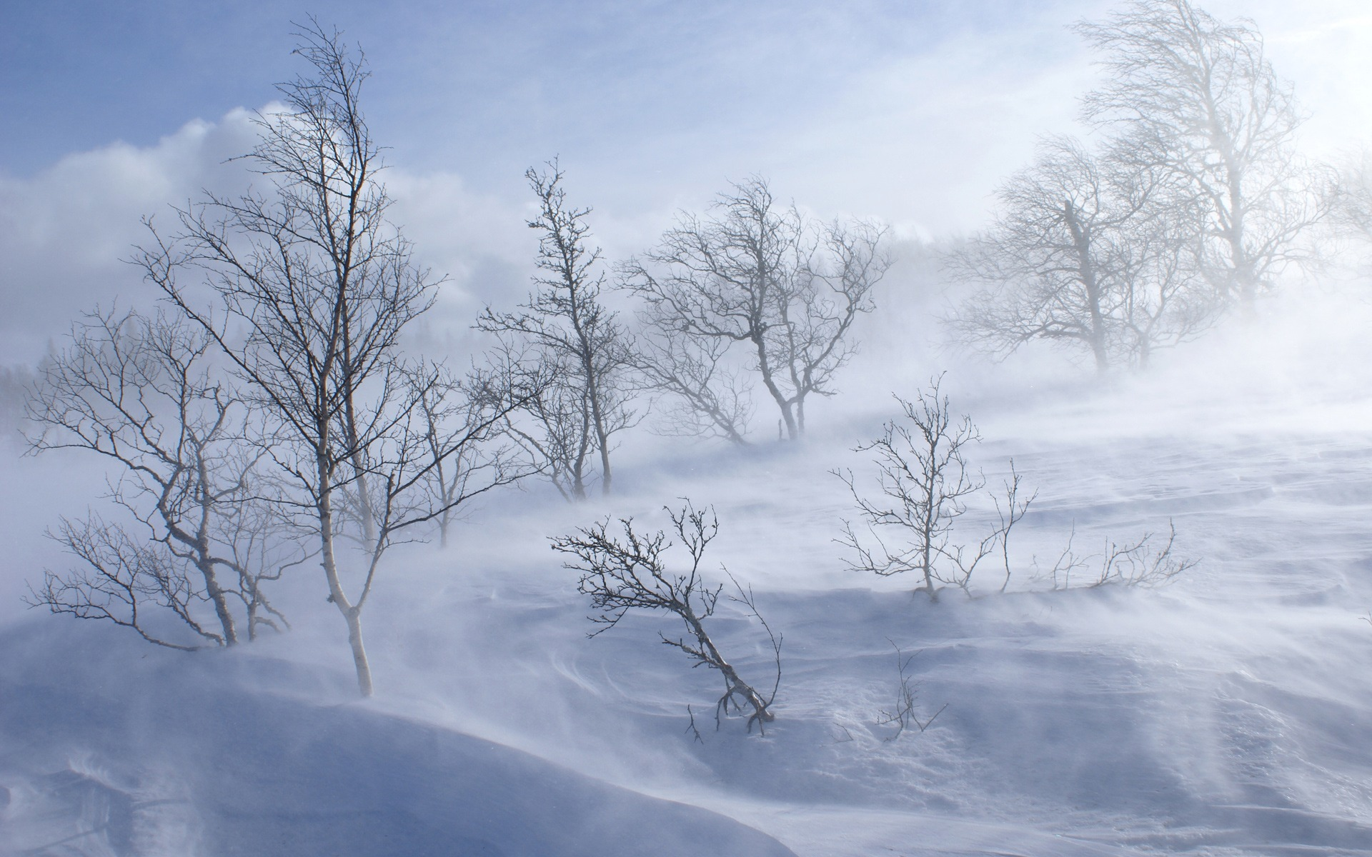 Winter_wallpapers_Snowstorm_019273_
