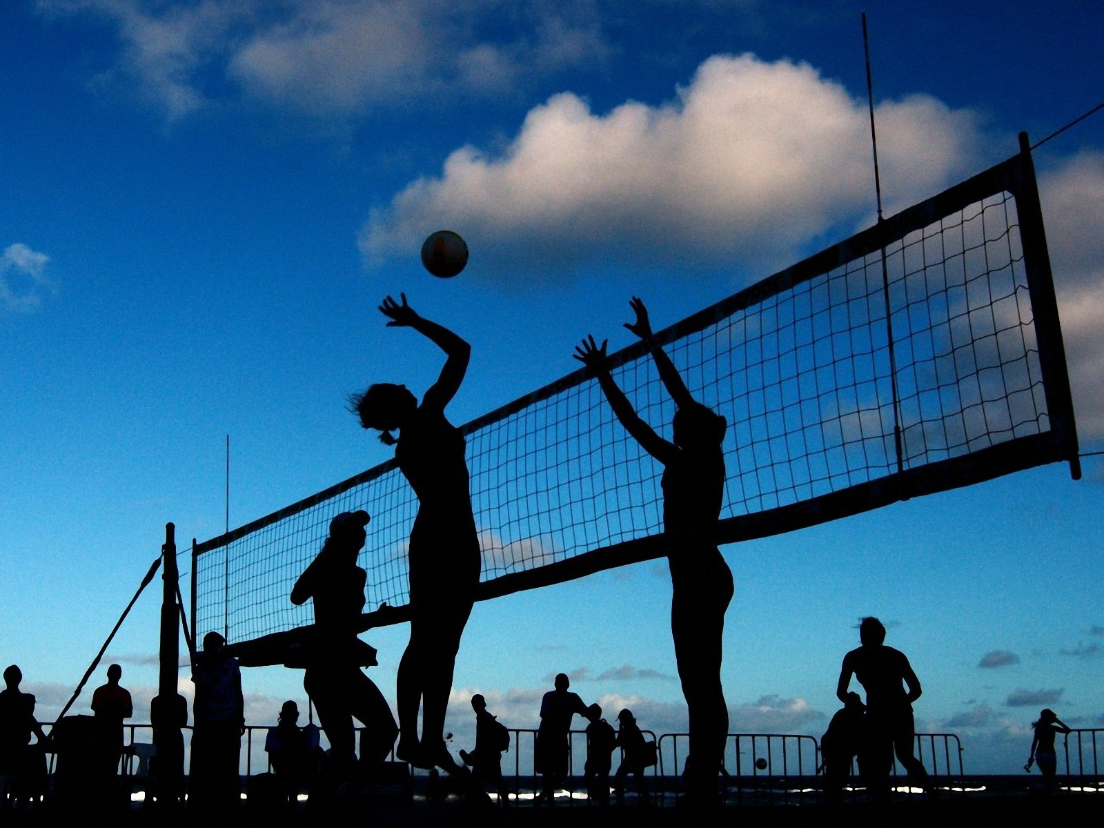 volleyball-hd-wallpaper-backgrounds-free-download-46