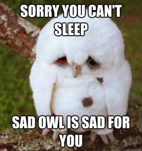 Funny-Meme-Sorry-You-Cant-Sleep-Image