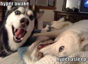 hyper-awake-hyper-asleep